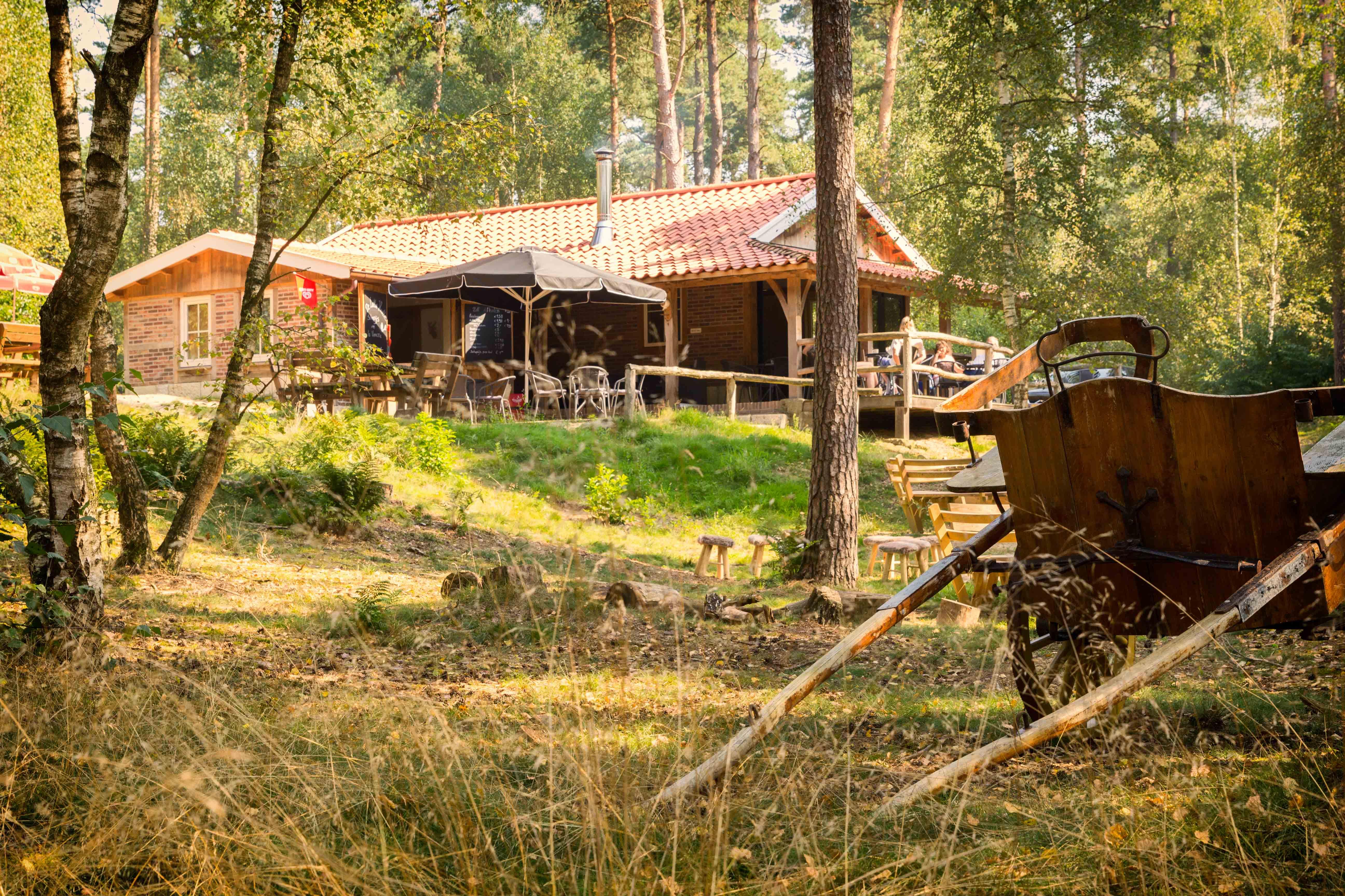 lutte hutte