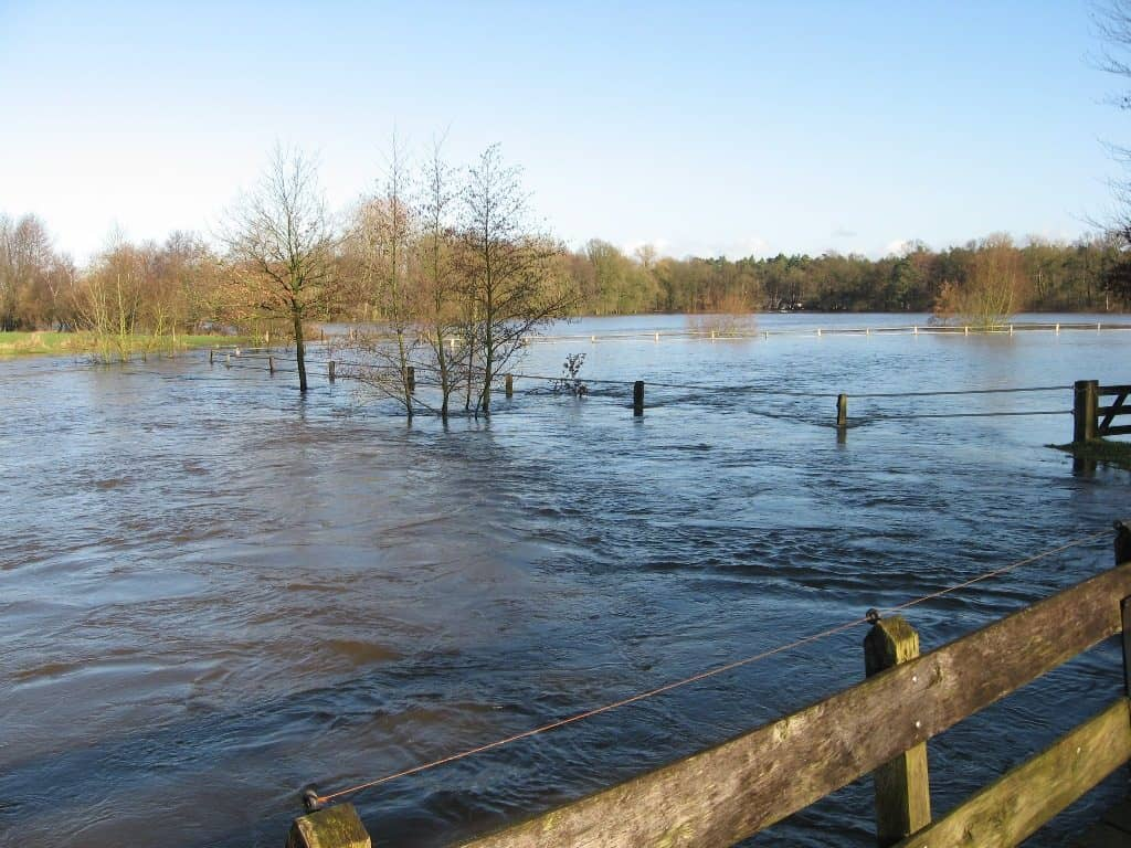 overstroming dinkel