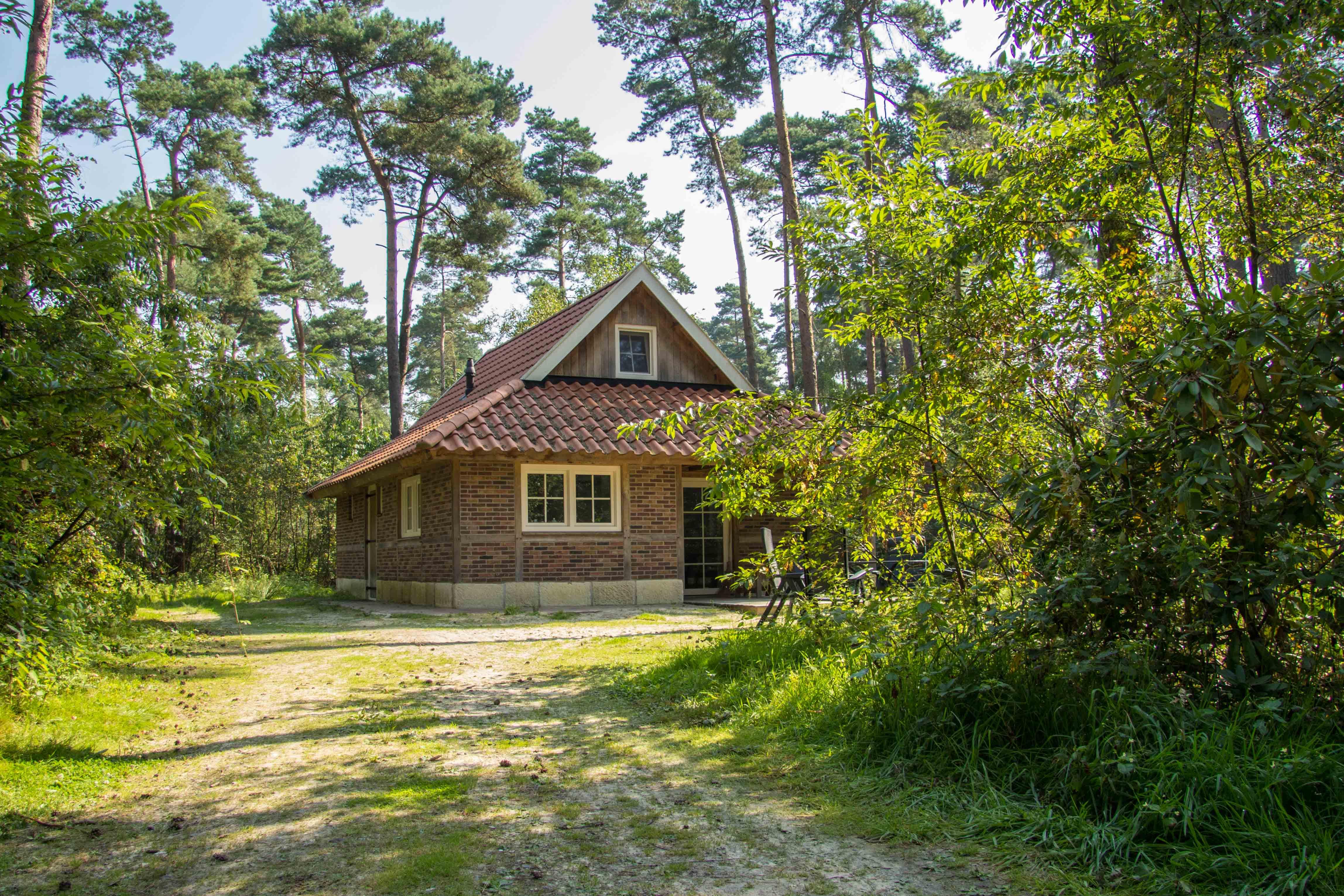 Huisje 12h landgoed lutterzand for Klein huisje in bos te koop